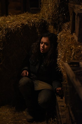 "Orphan Black fond d'écran titled Orphan Black ""Newer Elements of Our Defense"" (3x04) promotional picture"