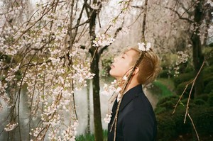 Rap Monster 'Mood for 愛 : Blossom' concept 写真