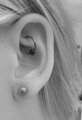 Rook Piercing with 10mm ring