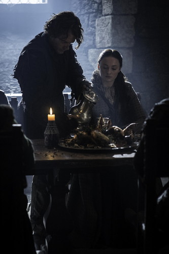 Sansa Stark Hintergrund possibly with a holiday dinner, a brasserie, and a abendessen tabelle entitled Sansa Stark and Reek