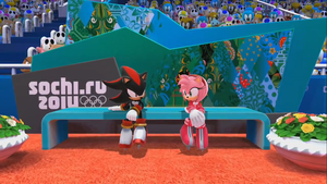 Shadow and Amy in Mario