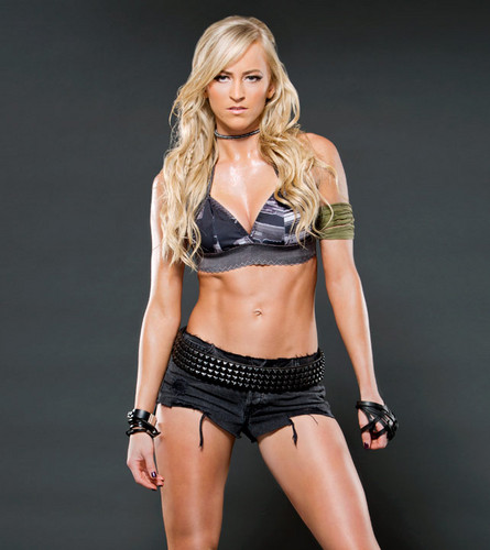 WWE Divas wallpaper probably containing a bikini called Summer Rae