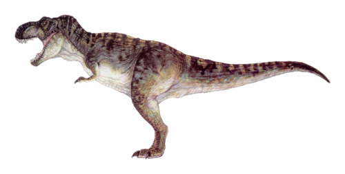 Jurassic Park پیپر وال containing a triceratops titled T-Rex JP concept