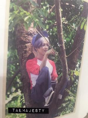 Taemin ODD Photocard