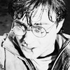 Harry Potter photo possibly with a portrait called The Deathly Hallows pt 2