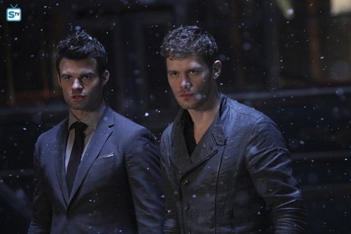 The Originals fond d'écran with a business suit and a suit entitled The Originals - Episode 2.22 - Ashes to Ashes - Promo Pics
