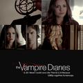 The Vampire diaries - the-vampire-diaries photo