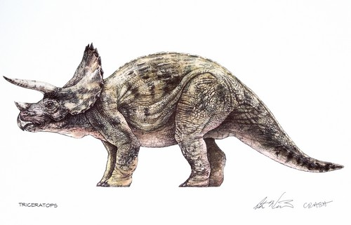 Jurassic Park پیپر وال containing a triceratops entitled Triceratops