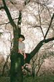 V 'Mood for Love : Blossom' concept photo