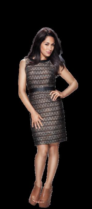 WWE.com プロフィール Pic - Brie Bella