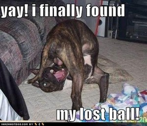 Where is my ball
