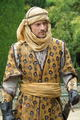 jaime lannister - house-lannister photo