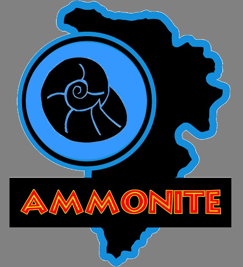 jp Ammonite