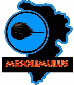 jp Mesolimulus