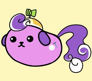 chiot screwball