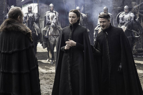 House Stark 바탕화면 entitled sansa with petyr and roose