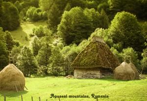 Apuseni, Romania