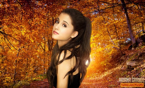 Ariana Grande wallpaper probably containing a beech entitled Ariana Grande 2015 Age Sexy Wallpaper (@ParisPic)