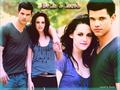 Bella and Jacob - jacob-and-bella wallpaper