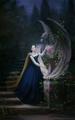 Belle      - princess-belle fan art