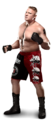 Brock Lesnar - wwe photo