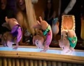 Dancing pros - the-chipettes photo