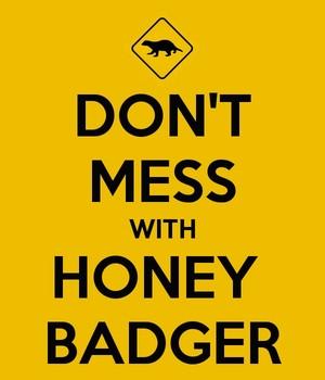 Don't Mess with Honey texugo