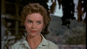 Dorothy McGuire as Katie Coates in Old Yeller