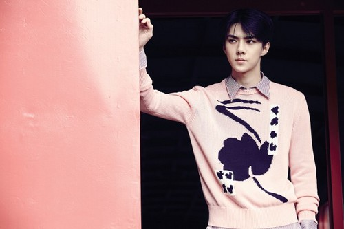 EXO-K wallpaper possibly with a leisure wear, a sign, and an outerwear titled exo Sehun 'Love Me Right'