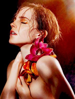 Emma Watson Photoshoots