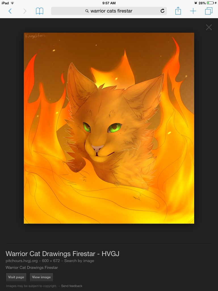 WARRIOR CATS Images Firestar HD Wallpaper And Background Photos