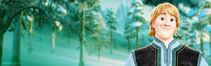 Frozen Fever Banner