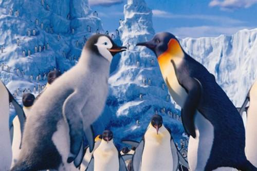 Animated Couples karatasi la kupamba ukuta titled Gloria and Mumble - Happy Feet