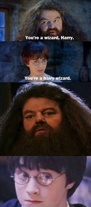 Hagrid the hairy wizard
