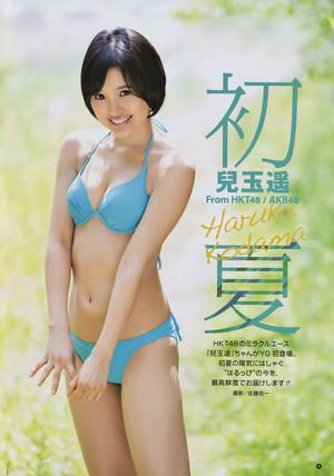 Haruka Kodama 「Young Gangan」 No.12 2015