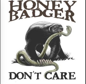 Honey texugo don't care!