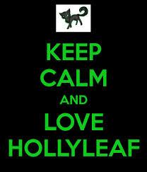 Keep Calm and 爱情 HollyLeaf =)