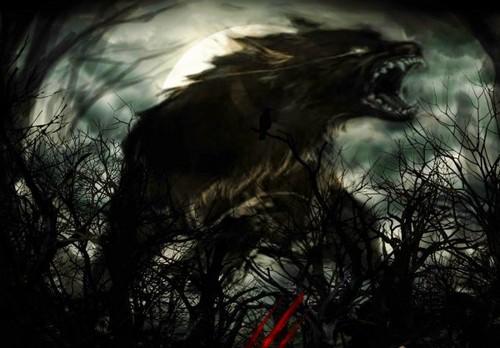 Werewolves wallpaper entitled Loups-Garous