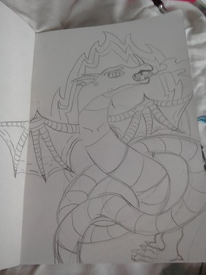 My dragon sketch