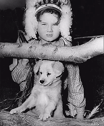 Old Yeller - Behind the Scenes - Kevin Corcoran