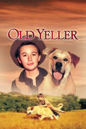 Old Yeller DVD Cover