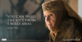 Olenna Tyrell - game-of-thrones photo