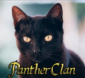 PantherClan's New Logo