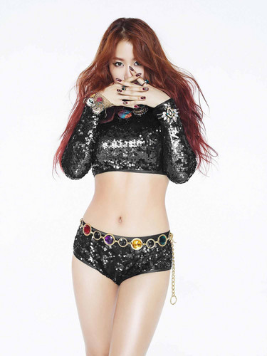 SISTAR (씨스타) wallpaper possibly containing a lingerie, a brassiere, and a bikini titled SISTAR – Concept foto For 'Shake It'
