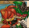 Scourge and Fiona - scourge-the-hedgehog photo