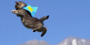 THE FLYING Pusa