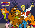 The Gang - scooby-doo wallpaper