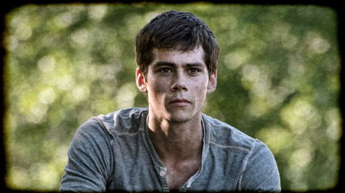 Dylan O'Brien karatasi la kupamba ukuta called The Maze Runner