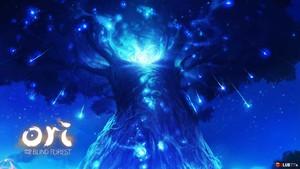 The Spirit árbol