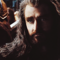Thorin Oakenshield - the-hobbit photo